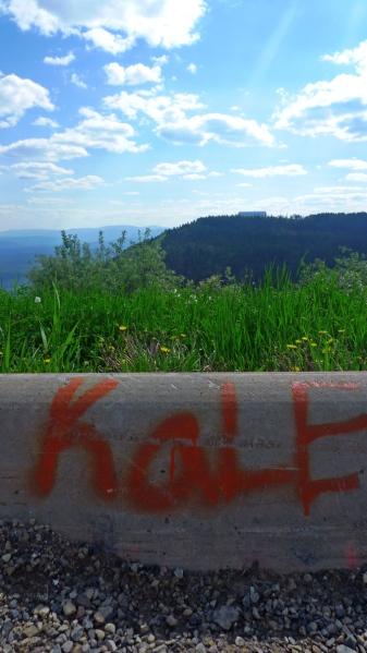 kale on the alaska highway - rural