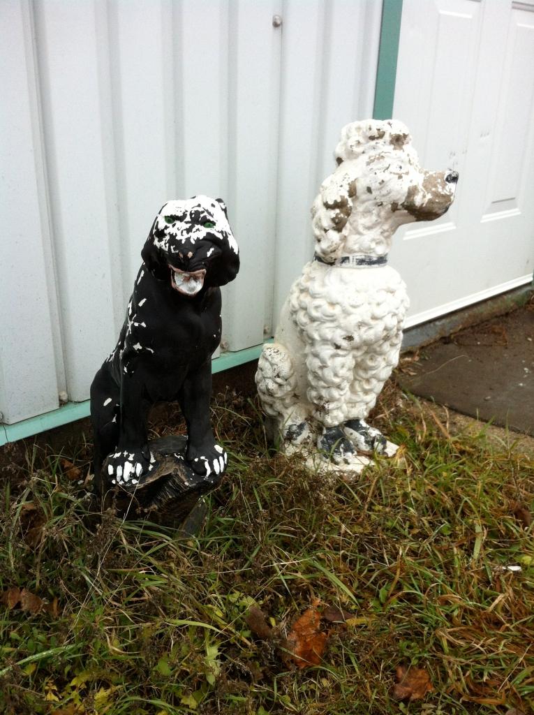 annie _dogs