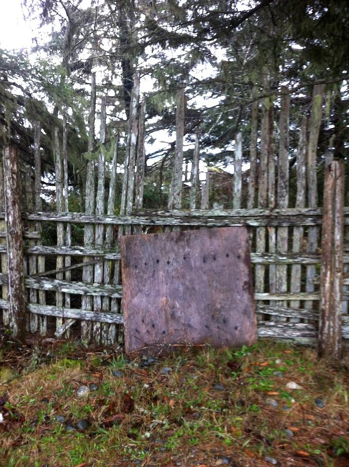 Kerri_fence rural