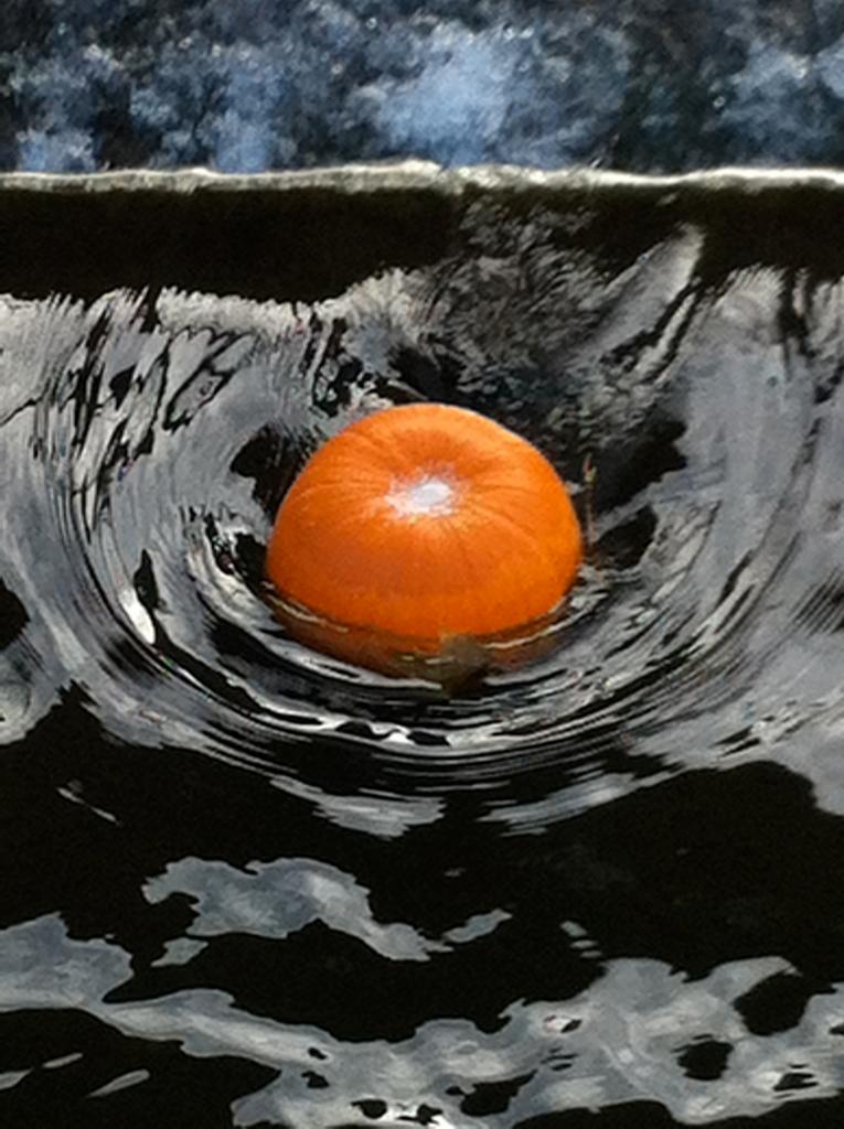 14ADriver_pumpkin