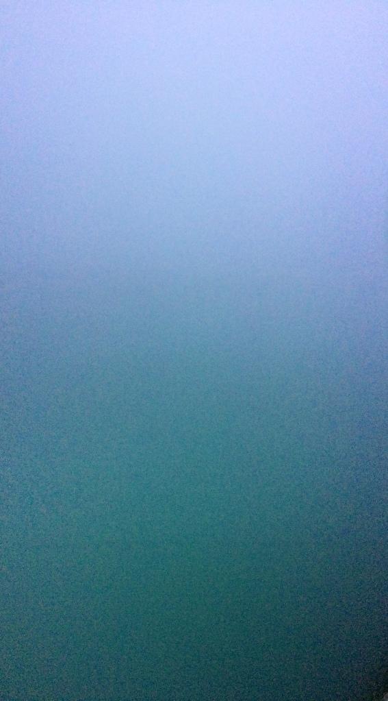 09reece_fog