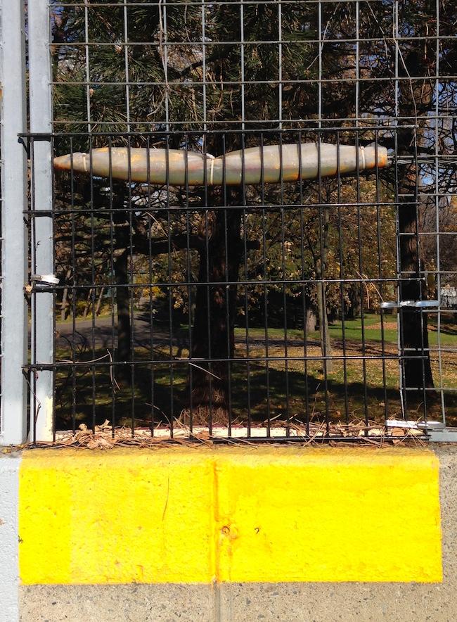 17_JDSAD Fence