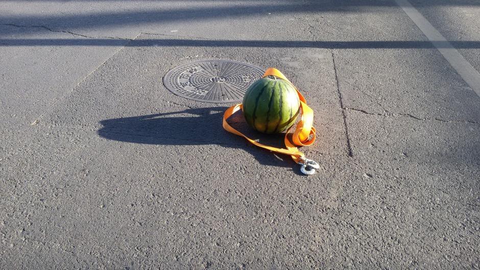 22_dl_melon