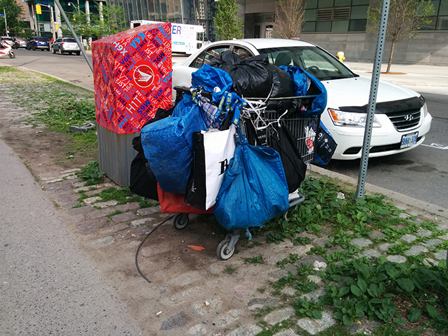24_sl_transients-cart