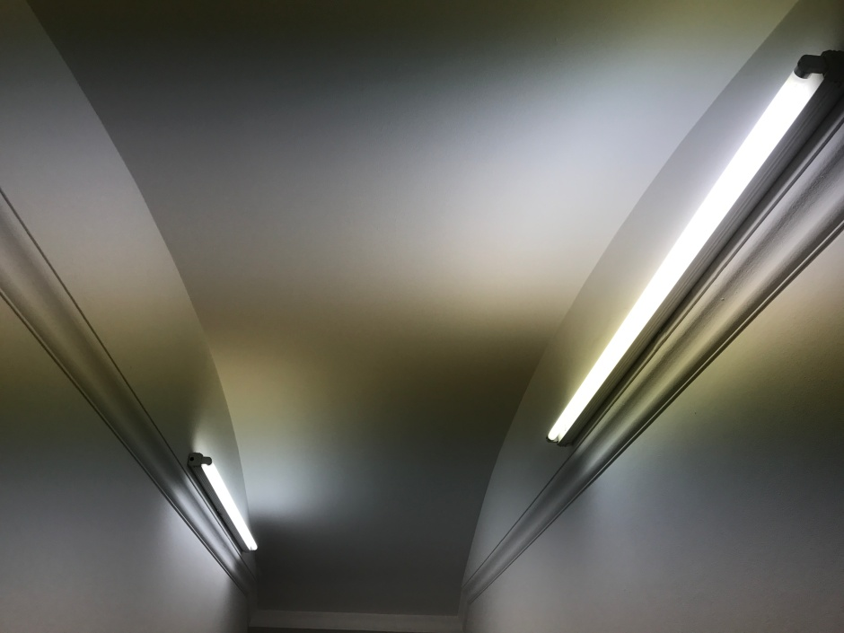 05_reece_lightd