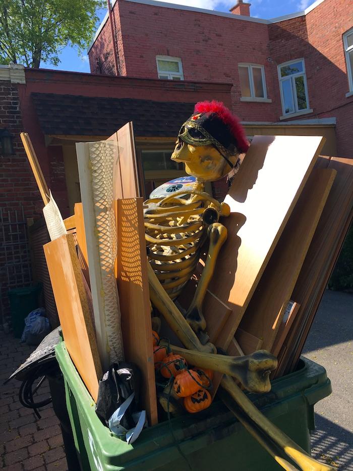 24_SAD_Skeleton_Dorner