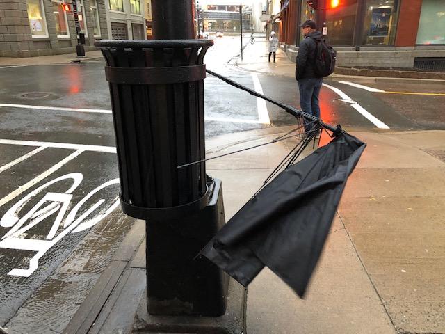 25_barbara_umbrella