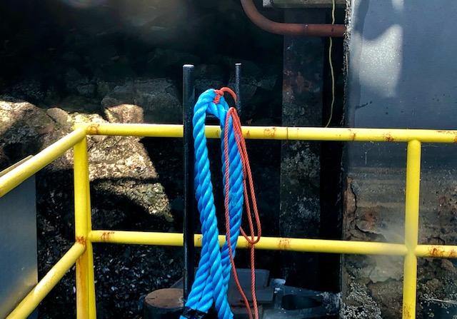 08_barbara_rope