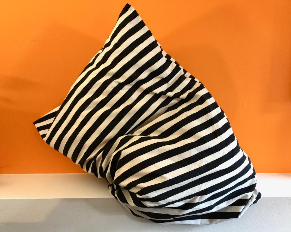 29_sg_pillow