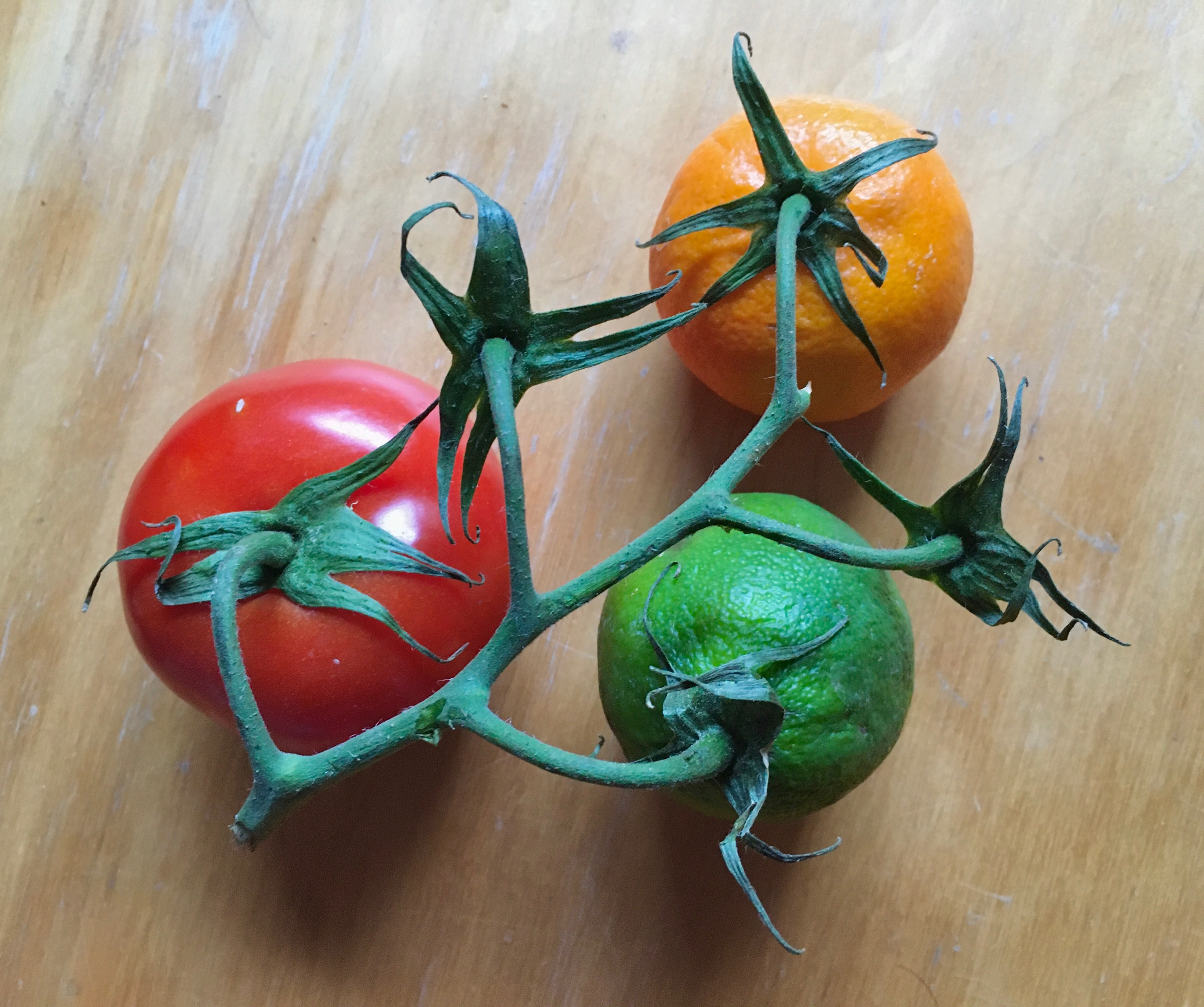 14_sg_tomatoes