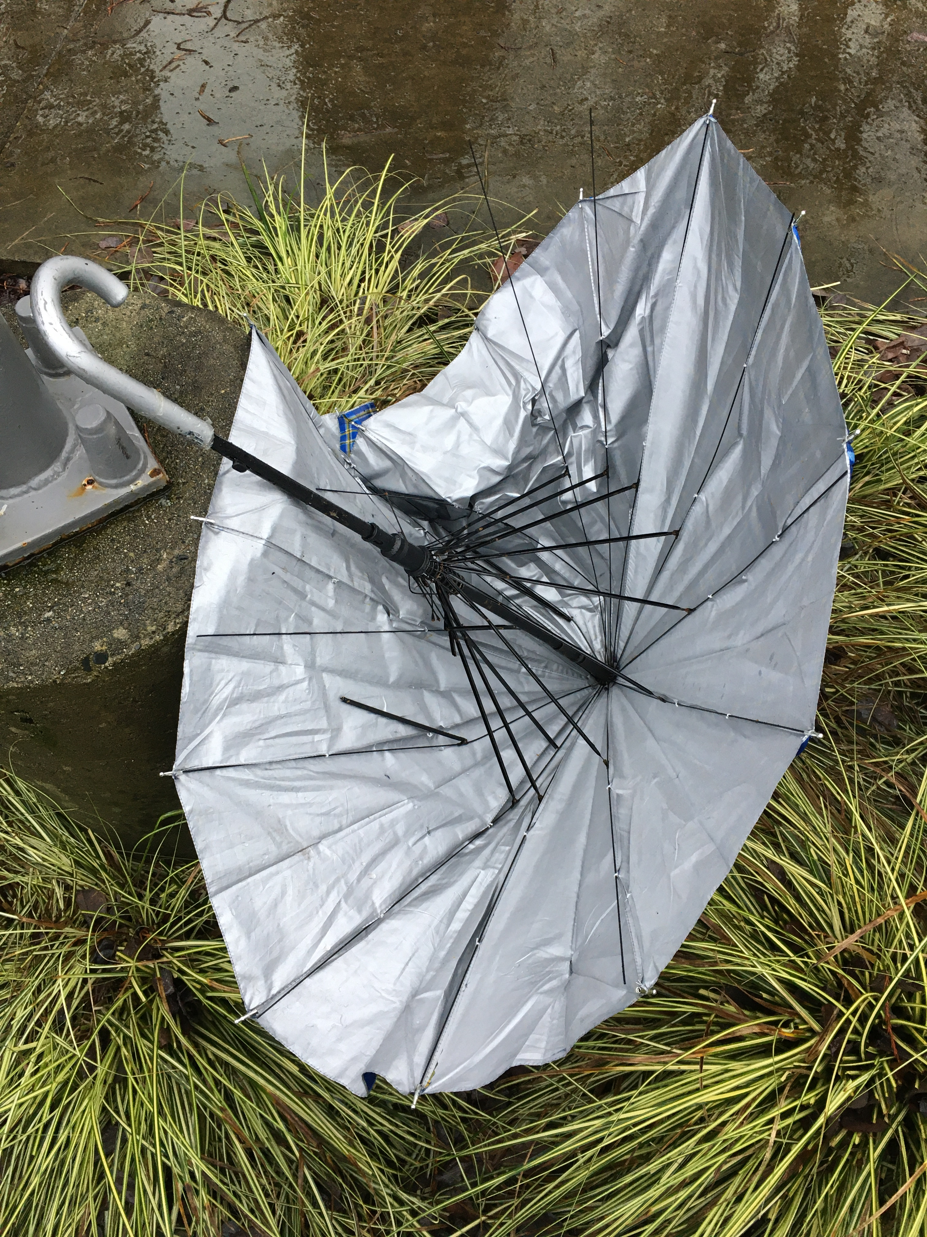 02_sara_umbrella